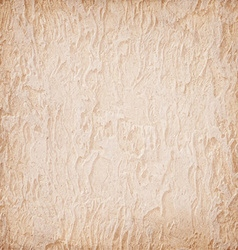 Grunge beige background wall with texture vector image