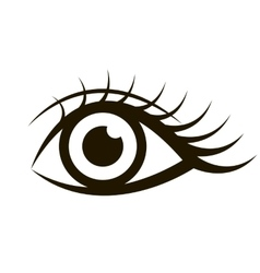 Female eye isolated on white vector image