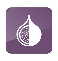 Fig outline icon tropical fruit vector