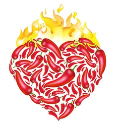 Chili pepper heart vector