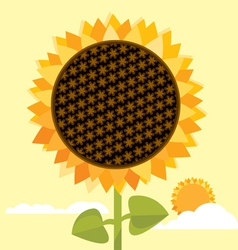 big sunflower vector image vector image