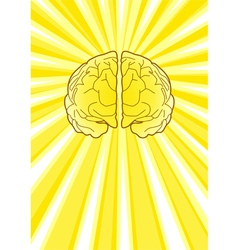 Bright Brain vector image vector image