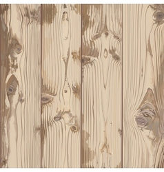 Hand-painted texture of light wood vector image vector image
