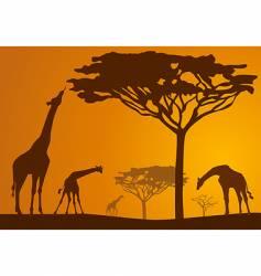 safari scene vector image