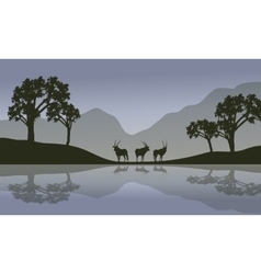 Antelope in riverbank scenery vector