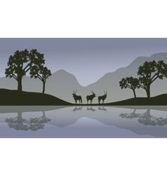 Antelope in riverbank scenery vector