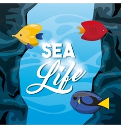 fish icon Sea life design graphic vector image