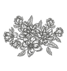 Hand drawn flowers vintage floral composition vector