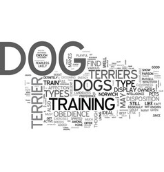 a glimpse on the various types of terrier dogs vector image