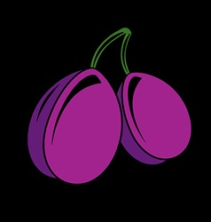 Two purple simple plums ripe sweet fruits vector image vector image