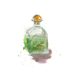 watercolor sketh absinthe bottle vector image vector image