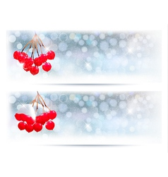 Holiday banners with christmas branch with red vector