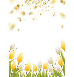 Tulip spring flowers vector image