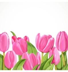 Pink tulip on white background vector