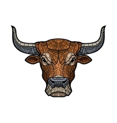 Bull head isolated vector image