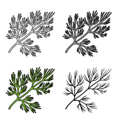 Dill icon in cartoon style isolated on white vector