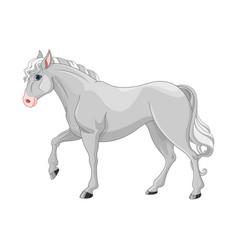 Grey horse vector