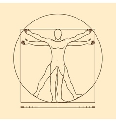 Leonardo da vinci vitruvian man vector image vector image
