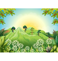 High mountains at the forest vector