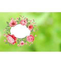 Luxurious peony background vector image
