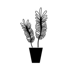 contour naturals plants inside pot with leaves vector image vector image