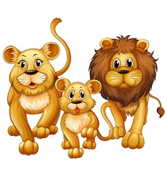Lion on family with cute cub vector