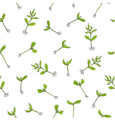 seamless pattern with hand draw sprouts plants vector image vector image