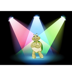 A turtle standing at the stage vector image