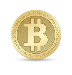 digital bitcoin golden coin with bitcoin symbol in vector image vector image