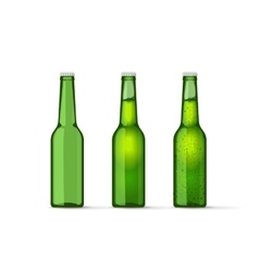 Green beer bottles set with bubbles full and vector