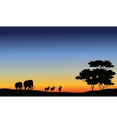 Elephant and antelope silhouette vector