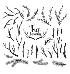 Hand drawn vintage tree branches Rustic vector image vector image