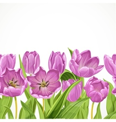 Purple tulips flowers seamless background vector image vector image