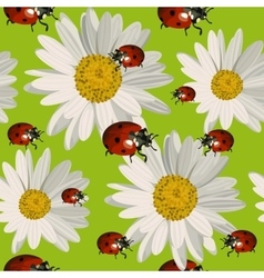 Seamless pattern with daisy flowers and ladybugs vector