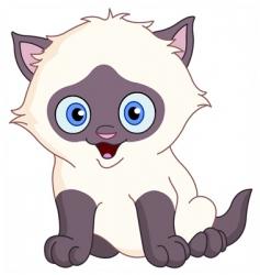 Siamese kitten vector