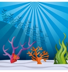 Fish coral and algae icon sea life design vector