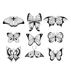 set of different butterflies and bugs with vector image vector image