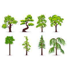 Tree icons vector