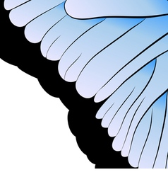 abstraction Part of butterfly wing vector image vector image