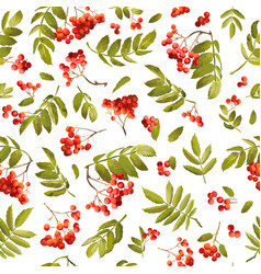 autumn rowan berry seamless background vector image vector image