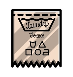 Color vintage laundry emblem vector image
