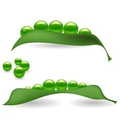 Green Peas vector image