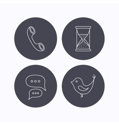 Chat bird and phone call icons vector