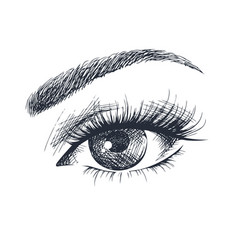 Beautiful female eye vector