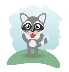 Cute raccoon animal wildlife vector
