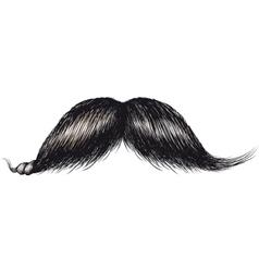 gentlemans mustache vector image vector image