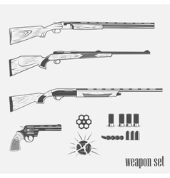 set of weapons from pistols vector image