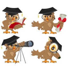 Set owl vector image