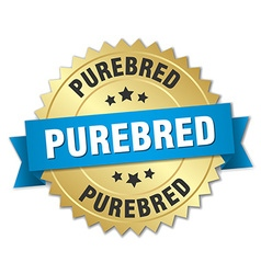 Purebred 3d gold badge with blue ribbon vector