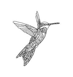 Black lace hand drawn doodle of colibri vector image